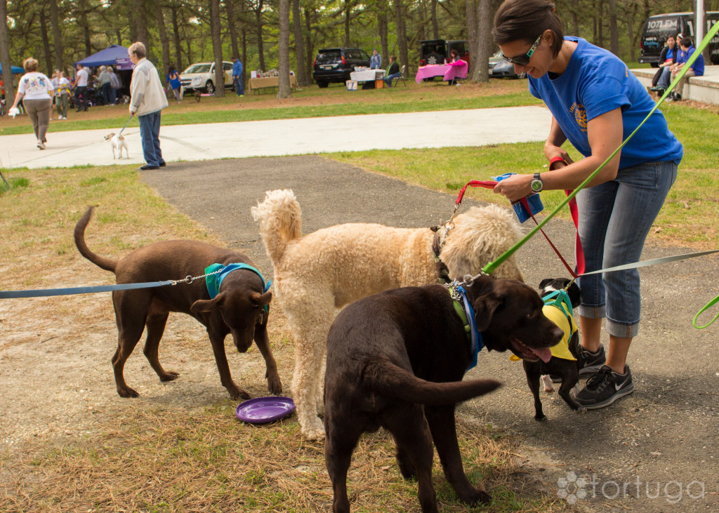 BarkInThePark-2